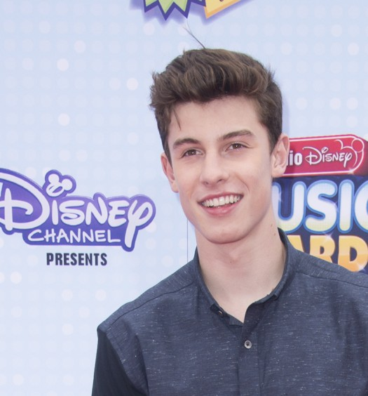 Shawn Mendes [Disney]