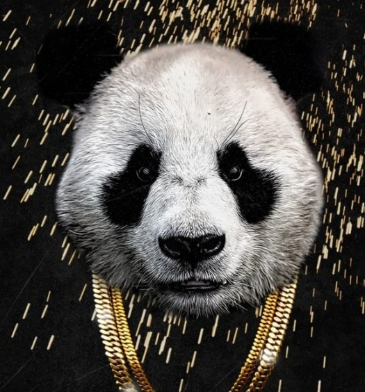 Desiigner Panda [Single Cover via GOOD/Def Jam]