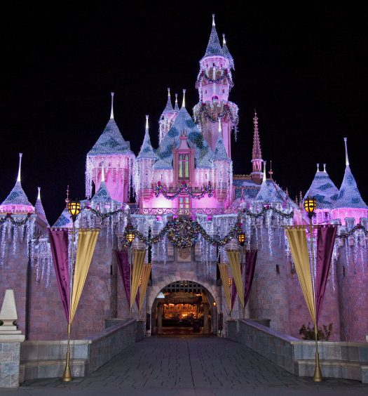 Disneyland [ABC Photo]