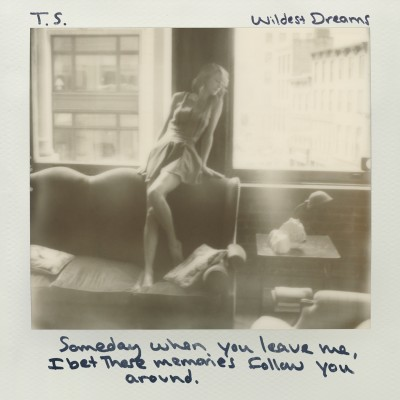 Wildest Dreams Cover
