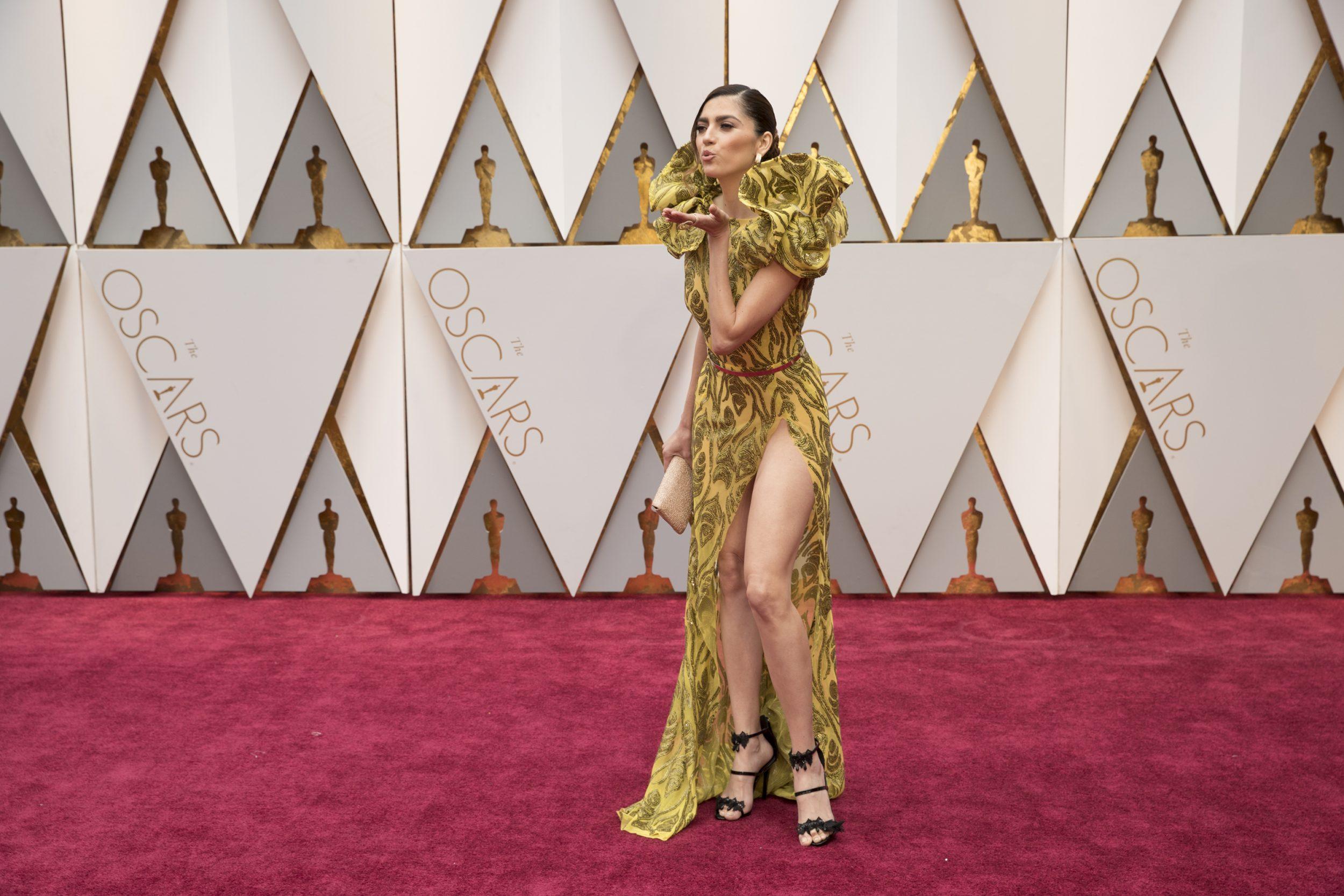 THE OSCARS(r) - The 89th Oscars(r)  broadcasts live on Oscar(r) SUNDAY, FEBRUARY 26, 2017, on the ABC Television Network. (ABC/Tyler Golden) BLANCA BLANCO