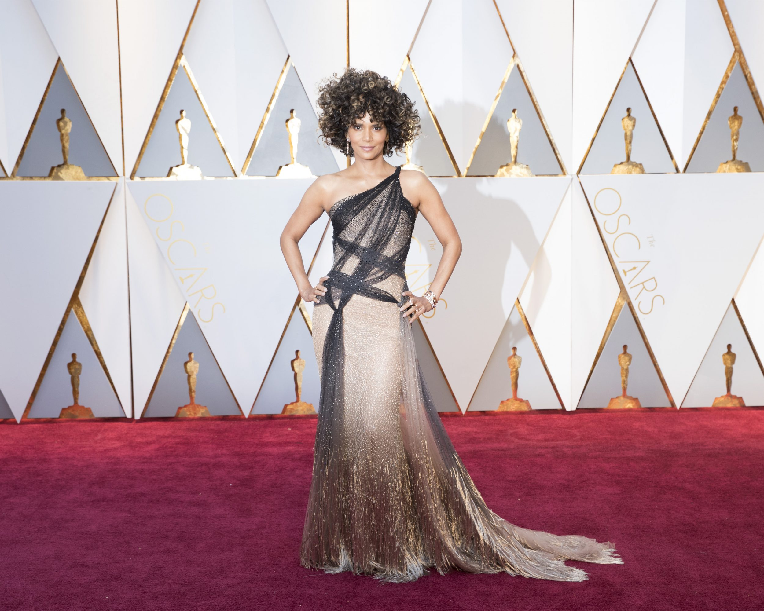 THE OSCARS(r) - The 89th Oscars(r)  broadcasts live on Oscar(r) SUNDAY, FEBRUARY 26, 2017, on the ABC Television Network. (ABC/Tyler Golden) HALLE BERRY